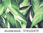 Fresh Tropical Green Leaves...
