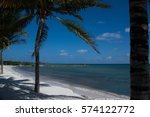 palm tree swaying on the white... | Shutterstock . vector #574122772