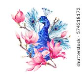 watercolor vintage peacock with ... | Shutterstock . vector #574218172