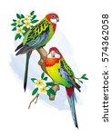 vector illustration of two... | Shutterstock .eps vector #574362058