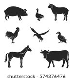 vector farm animals silhouettes ... | Shutterstock .eps vector #574376476