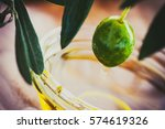 extra virgin healthy olive oil... | Shutterstock . vector #574619326