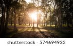 summer sunset and red stone... | Shutterstock . vector #574694932