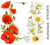 Poppy And Camomile Design...
