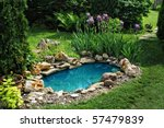 Small Pond On A Summer Day In...