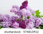 Purple Flowers Of Lilac With...