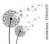 two beautiful stylized black... | Shutterstock .eps vector #574931275