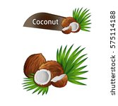 coconut with half and green... | Shutterstock .eps vector #575114188