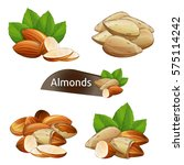 almond kernel with green leaves ... | Shutterstock .eps vector #575114242