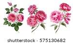 Watercolor Flowers. Pink...