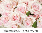 Stock photo pink rose for backgrounds 575179978