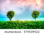 a summer scene of brightly... | Shutterstock . vector #575539522