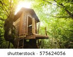 Tree House For Kids In The...