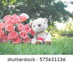 Stock photo valentines day with teddy bear falling in love and bouquet of roses in the garden 575631136