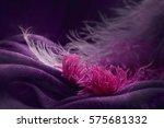 wave of elegant violet textile... | Shutterstock . vector #575681332