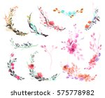 set of flowers  leaves and... | Shutterstock . vector #575778982