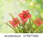 Summer Blurred Background With...