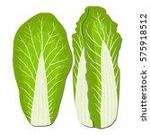 abstract vector icon...   Shutterstock .eps vector #575918512