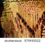 sea shell art | Shutterstock . vector #575935522
