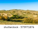 forest and grassland in the... | Shutterstock . vector #575971876