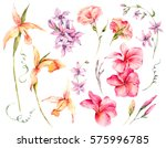 watercolor set of vintage... | Shutterstock . vector #575996785