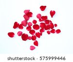 Stock photo abstract of red rose petals isolated on a white background 575999446