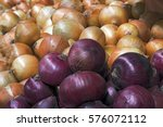 Small photo of Onion, Allium cepa, plant of the Alliaceae family used as a condiment worldwide