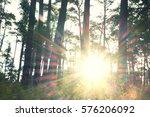 flare light in the woods | Shutterstock . vector #576206092