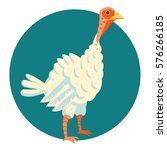 young turkey funny vector... | Shutterstock .eps vector #576266185
