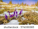 Spring Snow Melt And In The...