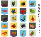 set of color berries icons in... | Shutterstock .eps vector #576504952