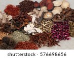 traditional chinese herbs used... | Shutterstock . vector #576698656