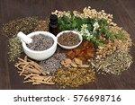 alternative herbal medicine for ... | Shutterstock . vector #576698716