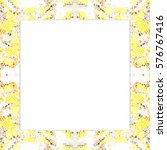 rectangular frame of... | Shutterstock . vector #576767416