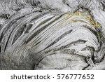 Texture Of Tree Bark Closeup....