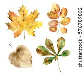 set of watercolor autumn leaves ... | Shutterstock . vector #576789802