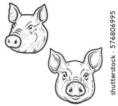 set of pig heads isolated on... | Shutterstock .eps vector #576806995