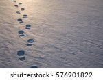 Fresh Boots Footprints In The...