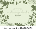 culinary herbs background.... | Shutterstock .eps vector #576980476