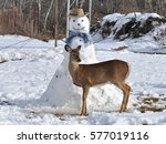 Young Deer Poses With A Snowman