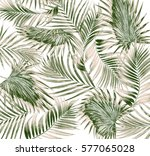 green leaves of palm tree on...   Shutterstock . vector #577065028