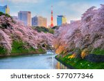 Chidorigafuchi Park During The...