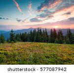 Colorful Summer Sunset In The...