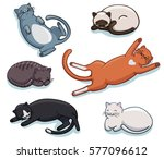 Stock vector vector set of cute sleeping cats different lazy sleepy lying kitties collection funny cartoon 577096612