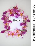 hello word on the background of ... | Shutterstock . vector #577138492