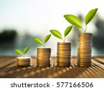 coins and money growing plant... | Shutterstock . vector #577166506