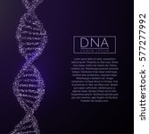 purple dna sequence glitter... | Shutterstock .eps vector #577277992