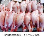 Close Up Of Fresh Red Snapper...