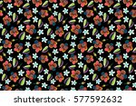 multicolored hibiscus flowers...   Shutterstock . vector #577592632