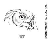 image portrait owl. african  ... | Shutterstock .eps vector #577657726